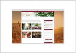 Website-CVPS-1